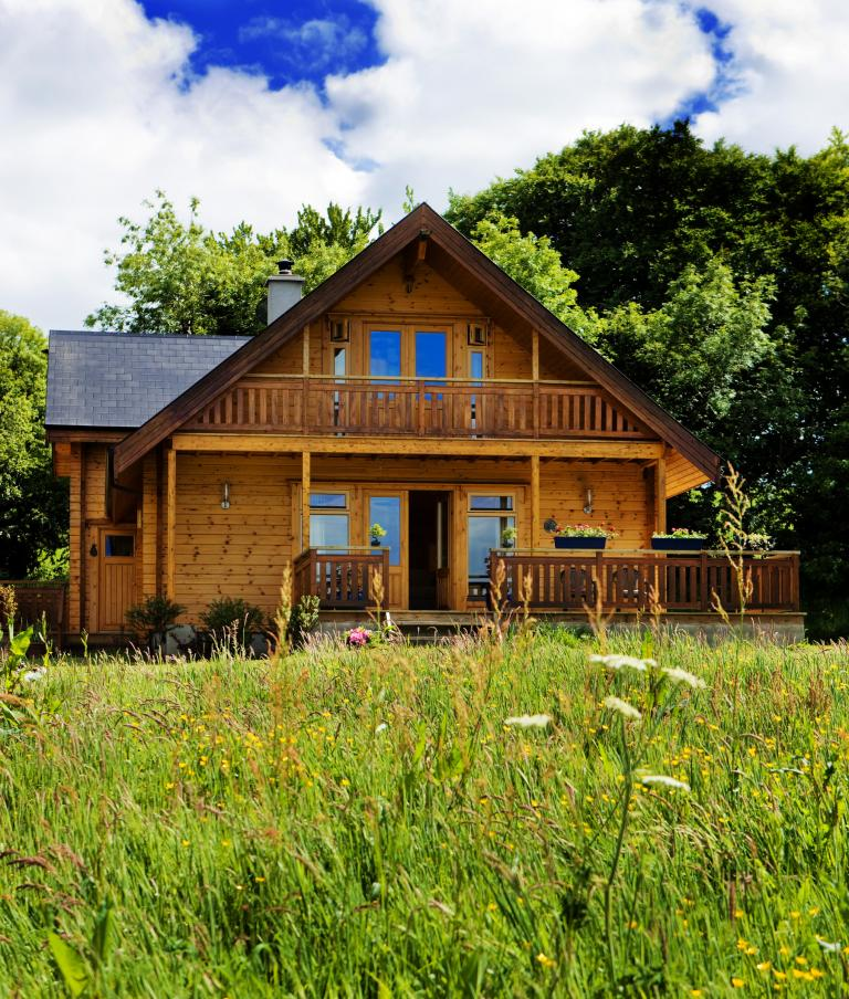 Log_Cabin_Ireland_Livingston_3.jpg