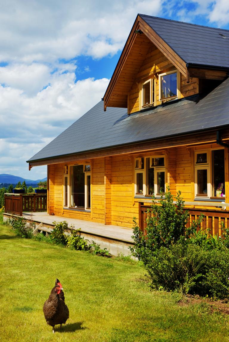 Log_Cabin_Ireland_Livingston_4.jpg